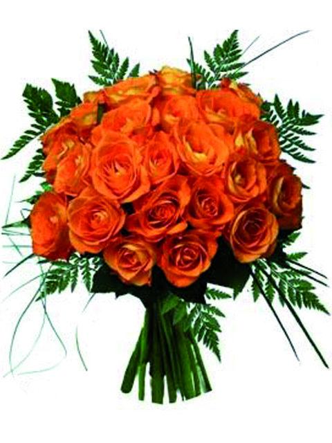 n. 24 rose arancioni