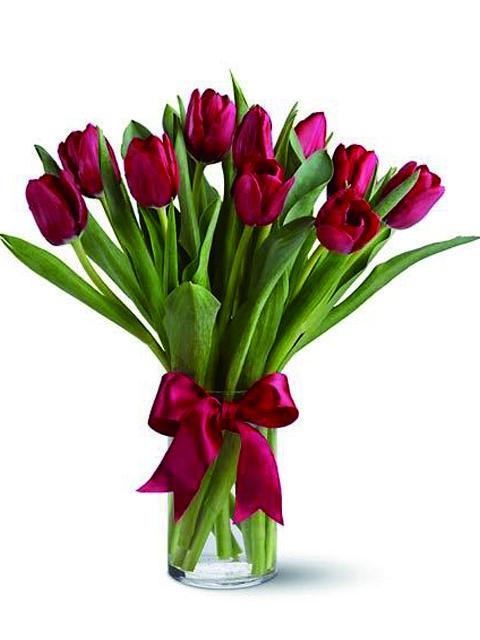 Mazzo di tulipani rossi