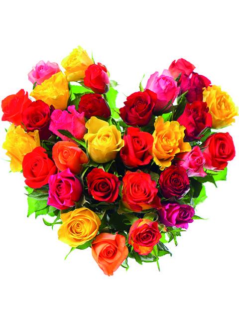 cuore di rose miste