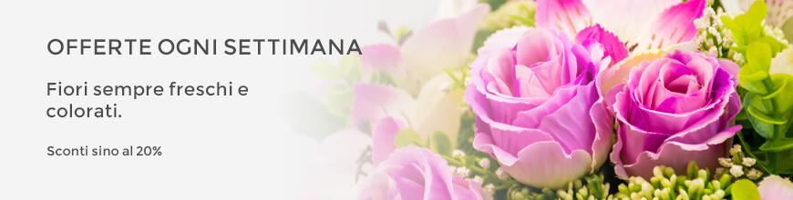 fiori in offerta online