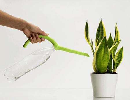 i consigli sull'annaffiatura delle piante